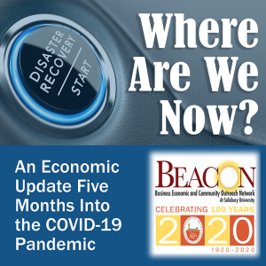 Economic Update 5 months into Covid Pandemic